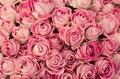 ◆募集中◆静岡県三島市内 バラの調香体験講座