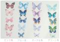 蝶の2枚重ねシフォンパーツ モチーフ(加工用)5枚セット