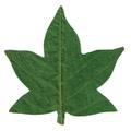 天然敷葉G8 緑 楓型