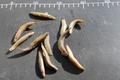 ミャンマー産バラ冷凍ドジョウ Sサイズ(4~6cm) 500gパック