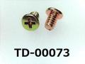 (TD-00073) 鉄16Aヤキ #0特ナベ [2805] + M1.6×2.5  ノジロック付 クロメート