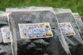 INOCCHIのプリプリ   生もずく 冷凍もずくっち 1袋200g12袋