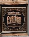 Everlast 2548 1650円   11-52 Ernie Ball Light アーニーボール エバーラスト アコギ弦
