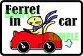 Ferret in car ステッカー