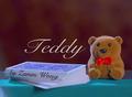 テディ(TEDDY)