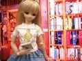 DD S/M/MDD/MSD用プリントTシャツ(doll)(7種類)