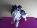 犬のレジェンド2
