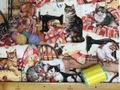 布「ソーイング好きを主に持つ猫2」