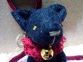 黒猫(エンジ)