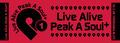 Live Alive Peak A Soul+ Vol.01 タオル 限定復刻版