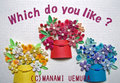 Which do you like ? ~あなたのお好みはどれですか?~[DF034]