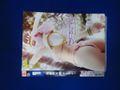 (販売用セルDVD)fcs054 悩殺快尻娘 マーラティ 野口まりや・杏紅茶々※背表紙に色褪せ 特撮 GIGA TGGP48