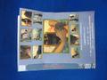(販売用セルDVD)fcs055 THE NYLON1/DVD-R仕様 足フェチ