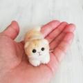 ベージュ折れ耳猫伏せポーズ*スモール子猫スコティッシュフォールド