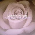 Lantern Parade / 『ファンクがファンクであったときから』 (ROSE 76/CD ALBUM)