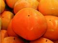 おすすめ!佐渡産おけさ柿(18~24玉)