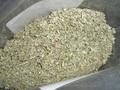 サルビアセージのリーフ (オーガニック約50g)