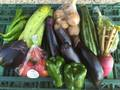 野菜BOX Mサイズ
