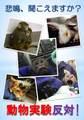 動物実験反対ポスター