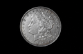 Morgan1921 EPS Liberty Face