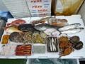 定期購入鮮魚セット15000