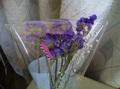 ドライフラワー(スターチス紫、カスミ草)送料無料
