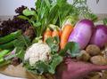すずめ野菜セット(写真はイメージです)