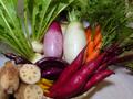 生きもの元気レンコン入り・すずめ野菜セット(写真はイメージです)