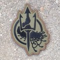 Embroidered Costa Insignia OD