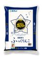 北海道産米 令和2年度産 ホクレンパールライス 函館育ち ふっくりんこ 精米 5kg