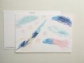 postcard 羽根/feathers