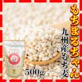 大麦 500g 九州産 もち麦 毎日健康 もちまるちゃん もち麦ごはん もち麦100% 食物繊維