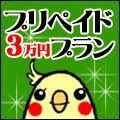 プリペイド3万円プラン [0g]