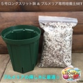 【便利なセット】プルメリア専用培養土と5号ロングスリット鉢のセット