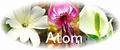 Atom・セット(レメディ+スプレー)
