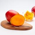 【国産!90%以上減農薬】アップルマンゴー 1kg量り売り