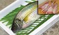 養殖シマアジ約1kg(3枚おろし)