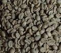 パプアニューギニア   200㌘ 豆