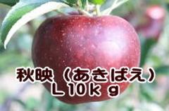 秋映(あきばえ) L 10kg
