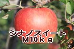 シナノスイート M 10kg