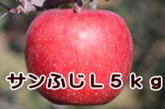 サンふじ L 5kg