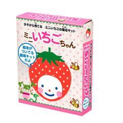 読んで育ててわくわく!絵本栽培キット ミニいちご