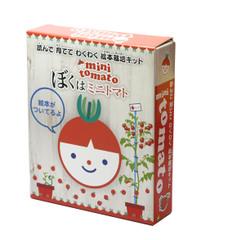 読んで育ててわくわく!絵本栽培キット ミニトマト