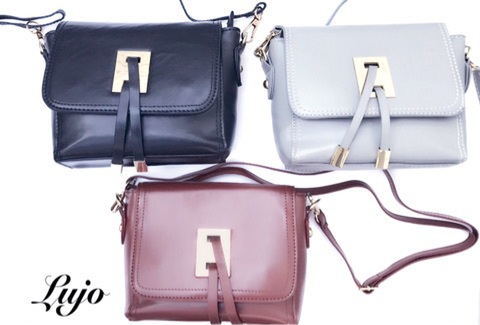 【2WAY】Gold metal fittings mini-shoulder bag