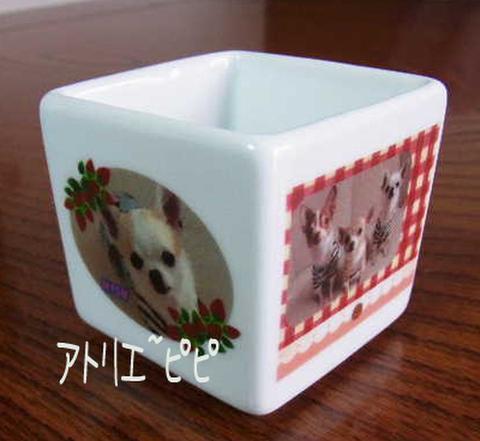 キューブ型小物入れ 約5.5センチ角(カラー)