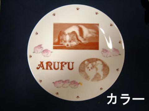26 飾り皿(丸皿)カラー写真入 ★お値下げ品