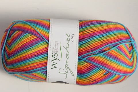 WYS 4Ply Rum Paradise 822