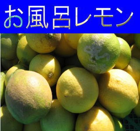 お風呂レモン 1kg