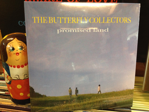 THE BUTTERFLY COLLECTORS 『promised land』