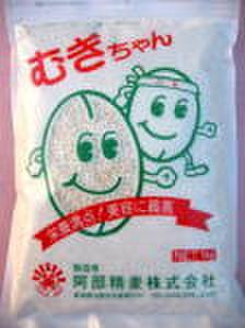 むぎちゃん(白麦)